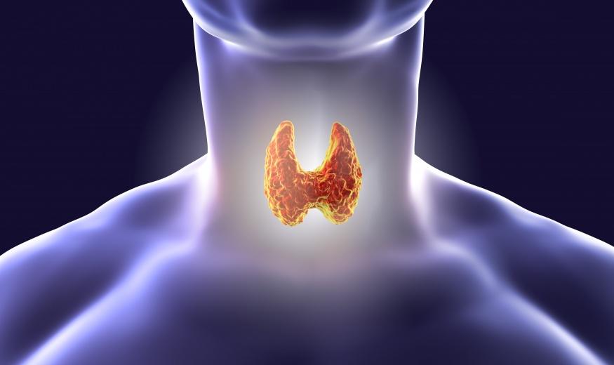 THYROID DISEASES