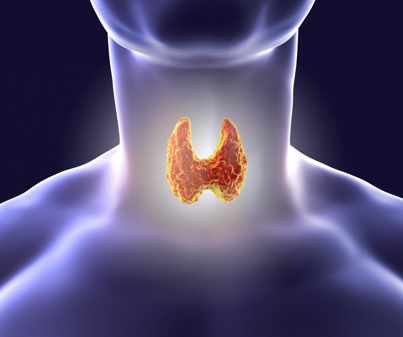 For thyroid health